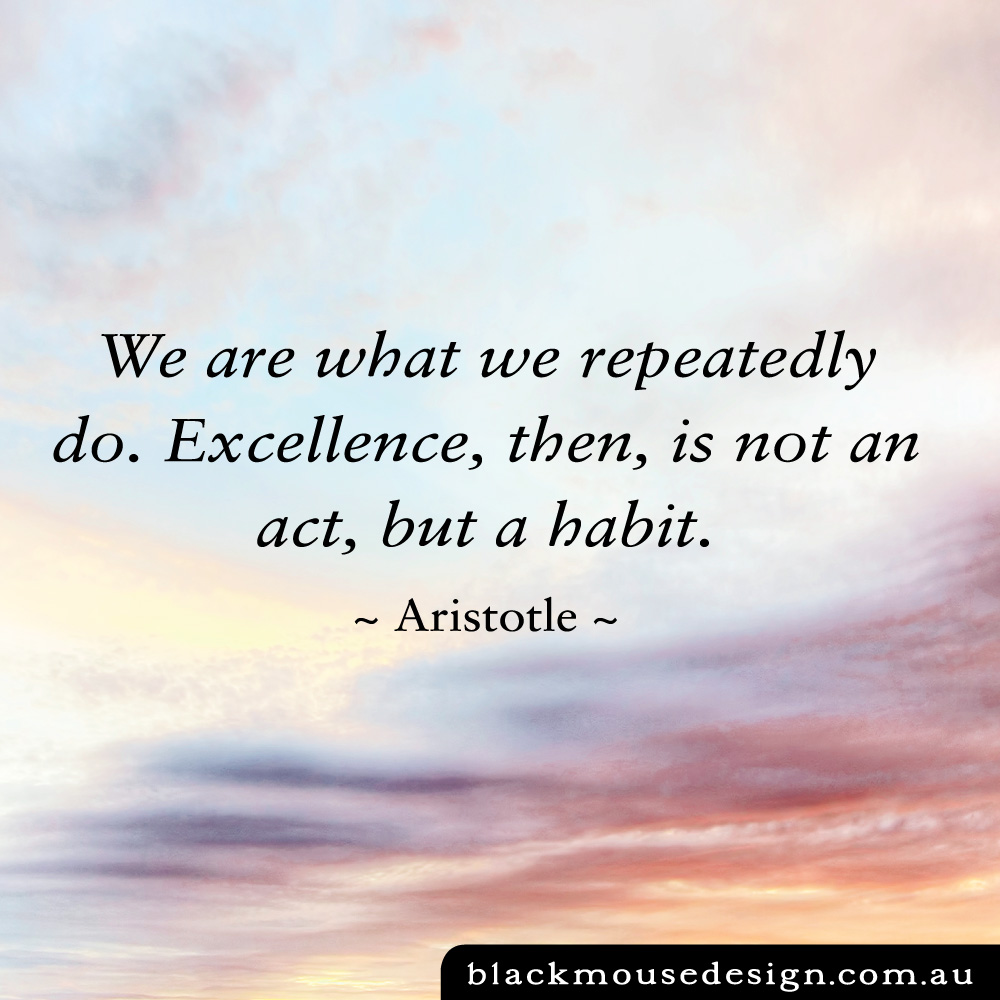 We are what we repeatedly do. Excellence, then, is not an act, but a habit ~ Aristotle ~
