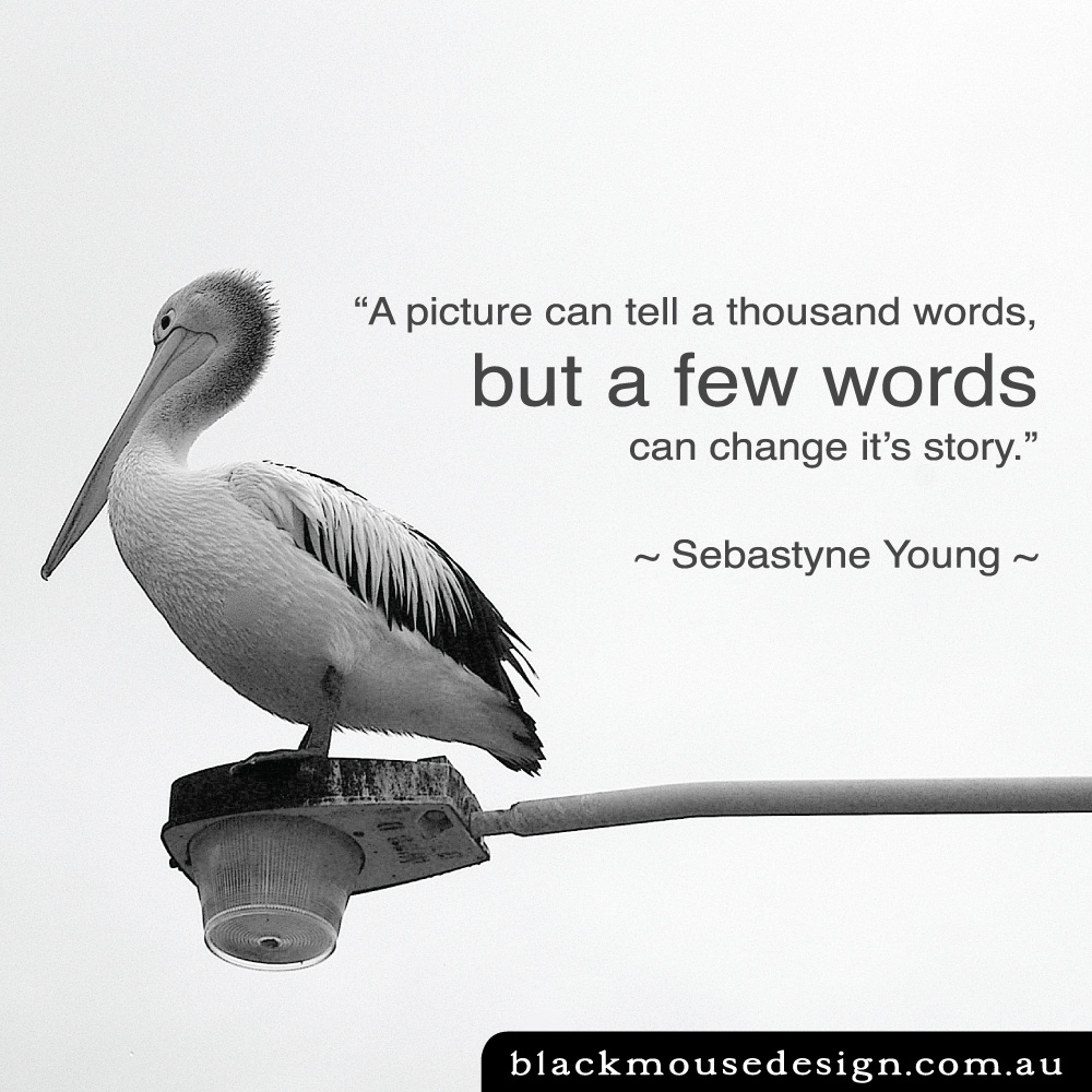 """A picture can tell a thousand words, but a few words can change it's story.""   ~ Sebastyne Young ~"