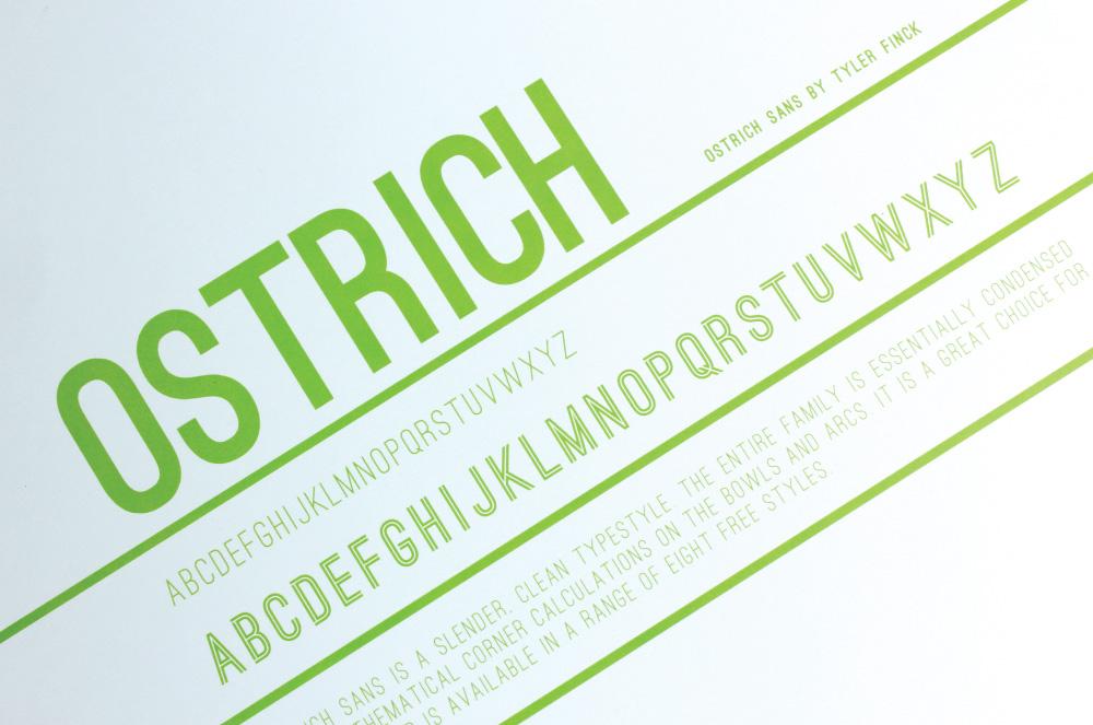 ostrich_002